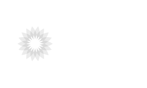Consequence Kundenlogo BP Solar