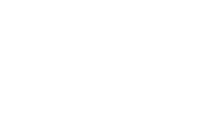 Consequence Kundenlogo Immonet